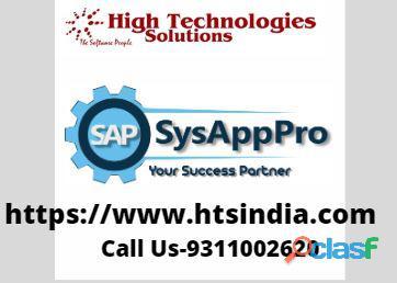 Best Sap Training Institute in Delhi 0
