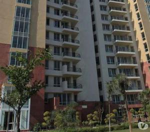 Apartments for rent in gurgaon