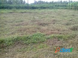 1 acre 36 cent residential plot located 2km from chalak