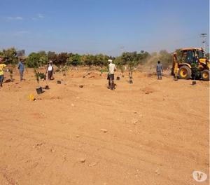 FARM PLOTS AT SHADNAGER