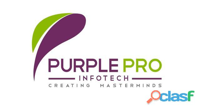 Technical Training with placement @ PURPLEPRO INFOTECH