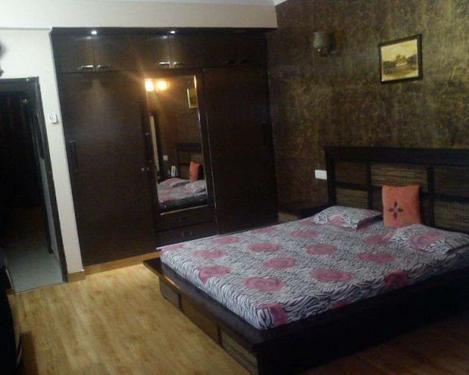 Fullyfurnished 19 bed rooms building,sec-51,noida 9911599901