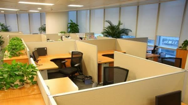 12114 sq ft posh office space for rent at indira nagar