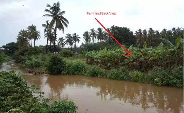 80 cents Farm house land near Noyyal River, Coimbatore -