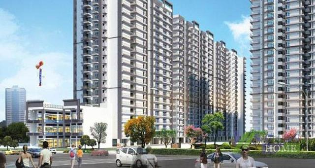 Windsor paradise 3 bhk apartment rs 41 lac 9911487788