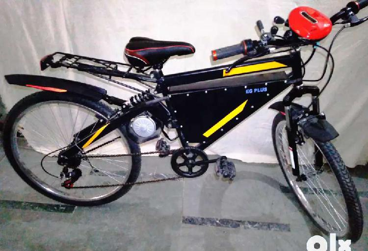 Electric cycle bicycle