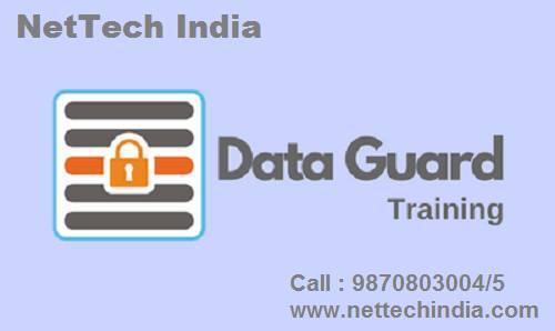 Data guard training institute in mumbai - lessons & tutoring