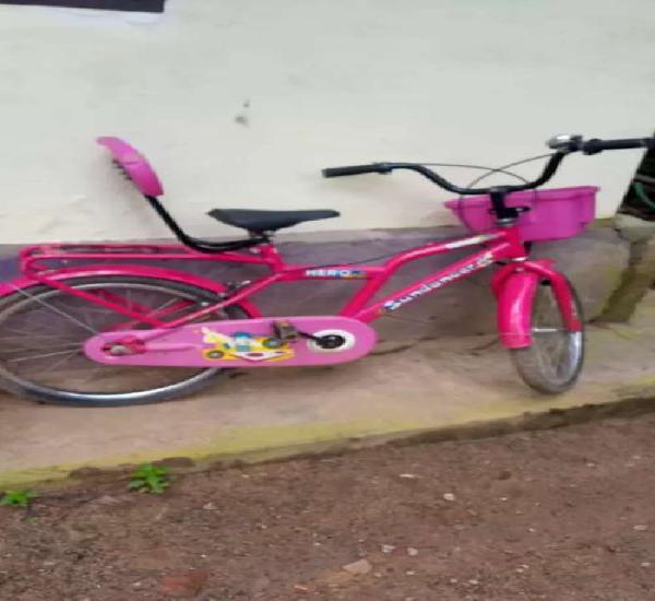 Sundancer kids cycle