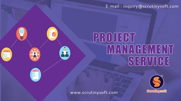 Project management services - computer services