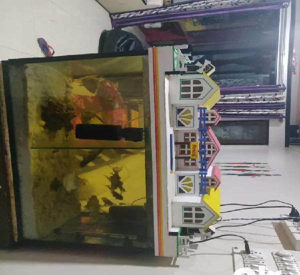 Fish tank with partition