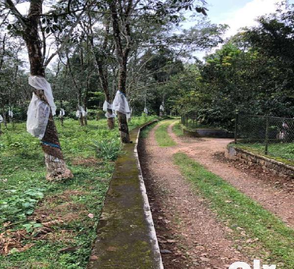 Land for sale in karukachal , nedumkunnam