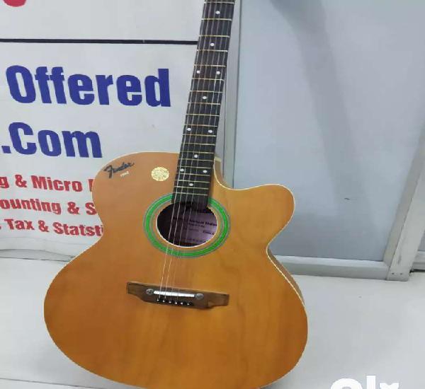 This fender indain guitar