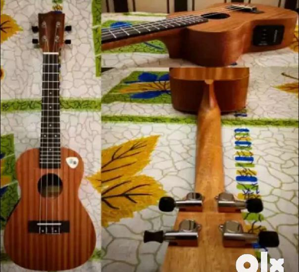 Ukulele with equilizer only 2 month old