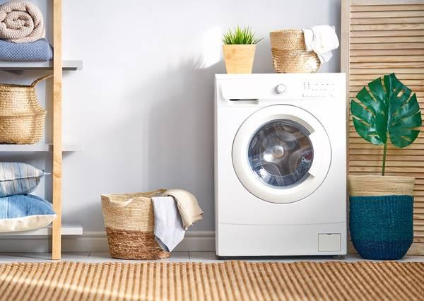 Looking for professional consultant for laundry business