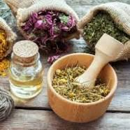 Herbal extracts delhi - beauty services
