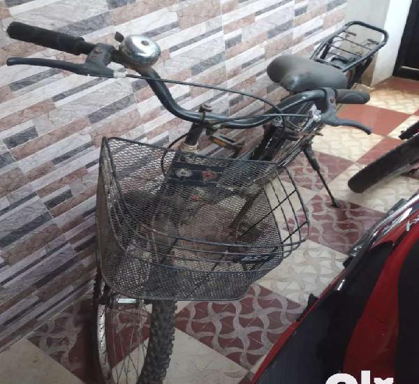 Lady bird bsa cycle for sale at kuniyamuthur