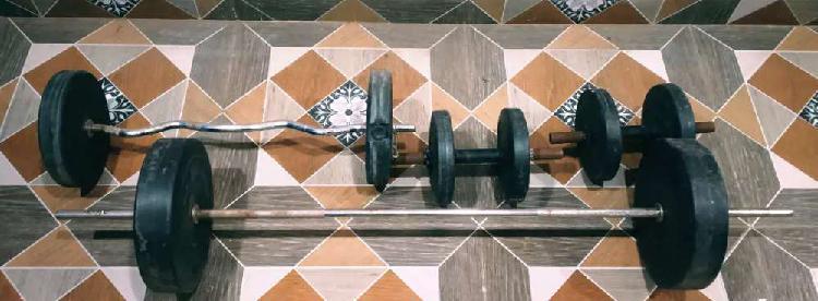 Zym weights