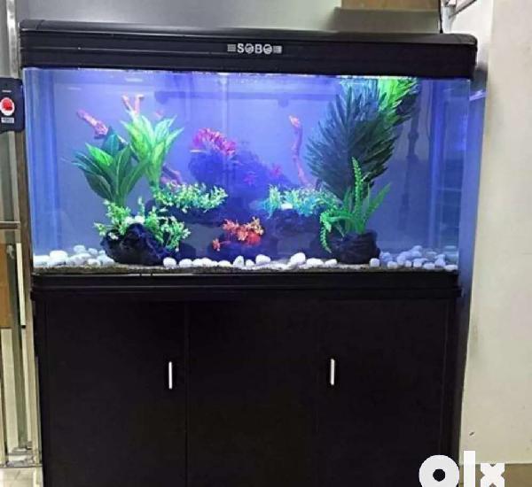 Rs aquariums