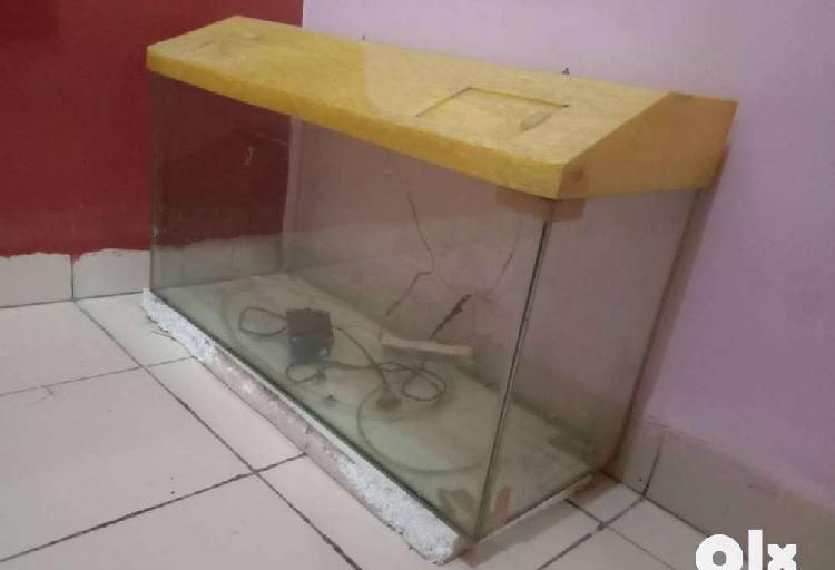 Fish tank 2.5 feet