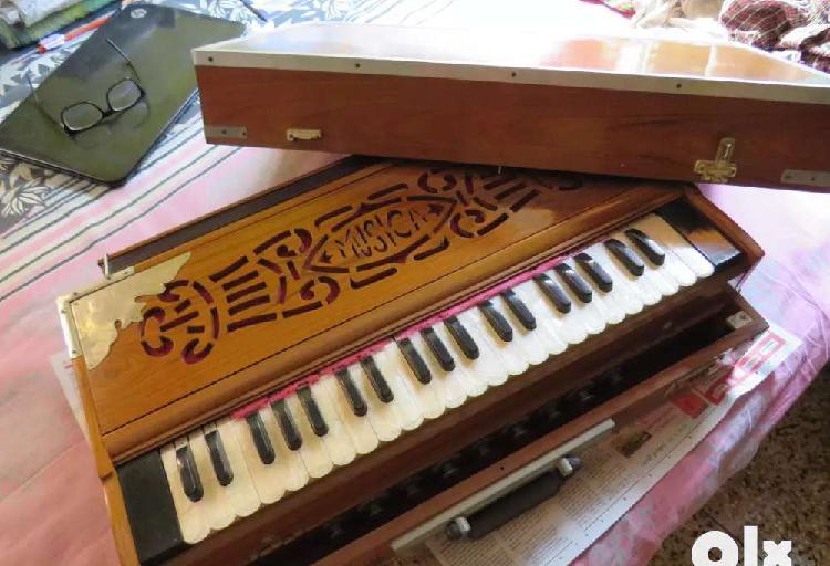 New unused harmonium double reed