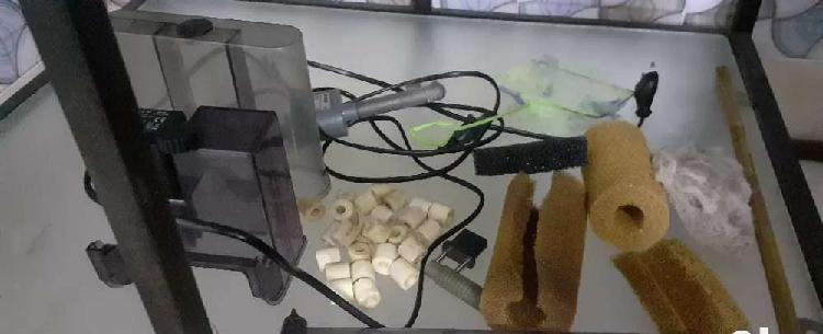 2 HOB filters and few driftwood pieces all at Rs1000
