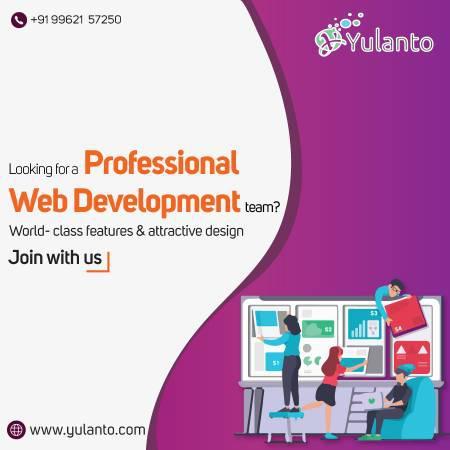 Professional website development services company.......$199
