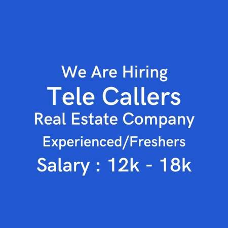 Telecallers and Lead Generators for Real Estate Company -