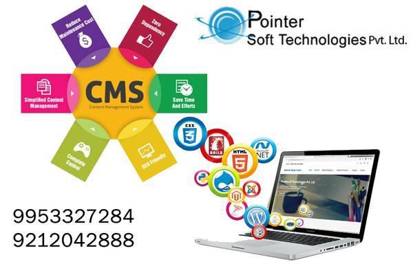 Online fast services like website design delhi - computer