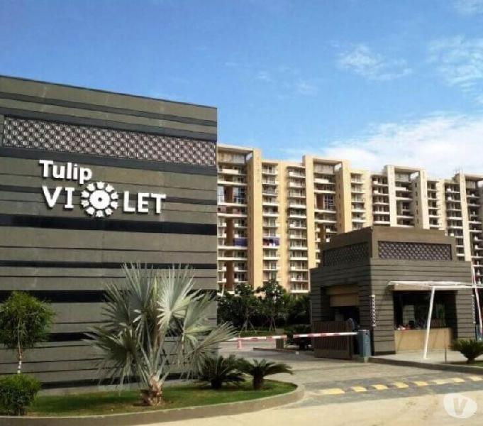 Ready to move tulip violet 3 bhk @ inr 1.12 cr.