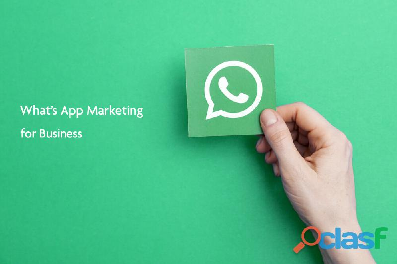 Whats app marketing service provider in india