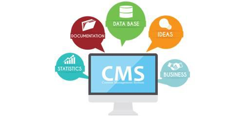 Cms company - computer services