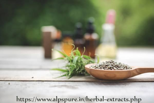 Herbal extract in Delhi - beauty services