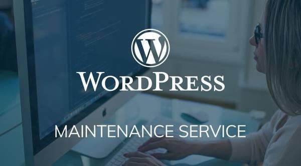 Why should you choose wordpress development? - computer