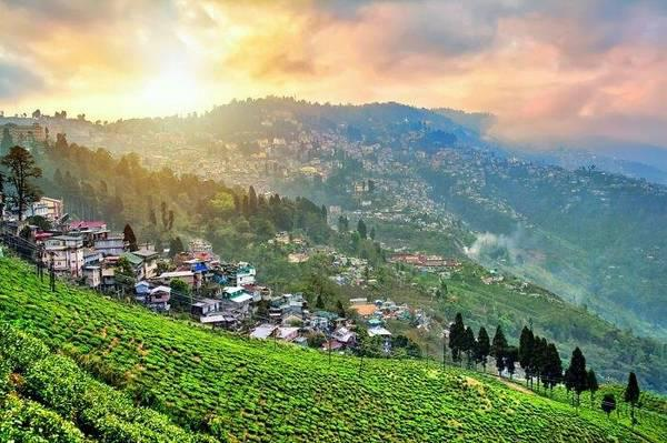 Travel agent in darjeeling - travel/vacation services