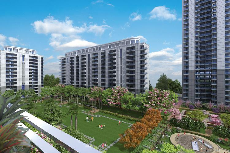 Ready to Move Apartments Sector 81 DLF The Ultima