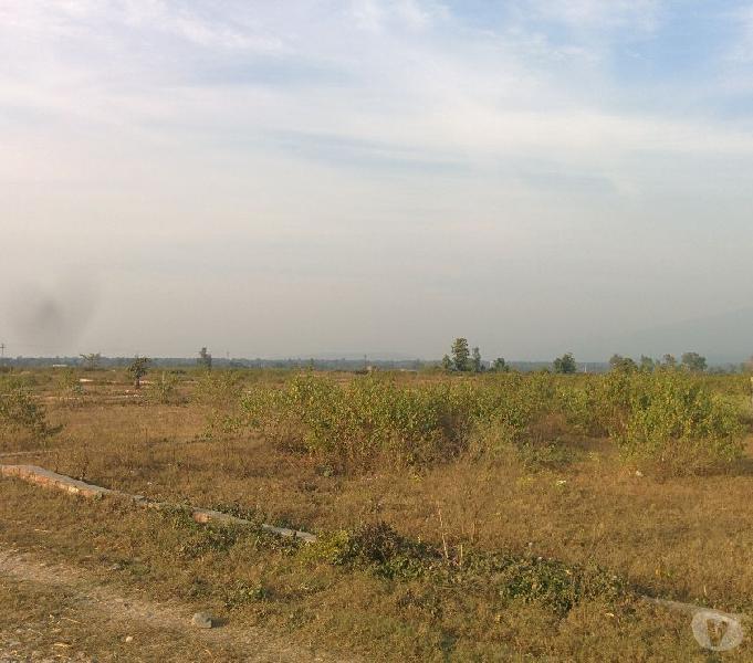 Institutional land in singniwala dehradun