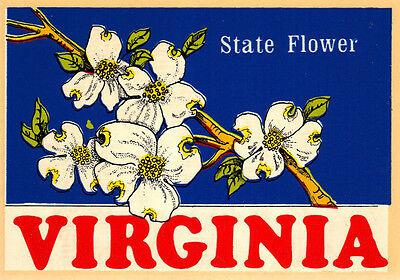 Vintage travel decal virginia dogwood state flower auto