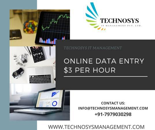 Technosys online data entry $3 per hour - computer services