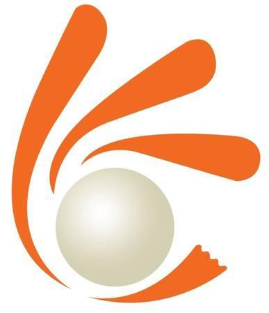 Mobile application development company in india - computer