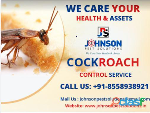 Professional Pest Control treatments in Chandigarh