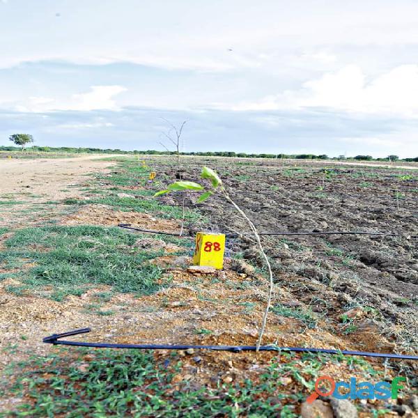 Open farm plots for sale per sqyard 2999/