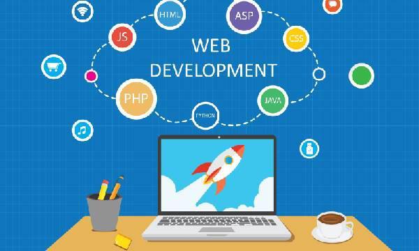 Website development agency in delhi | web development agency