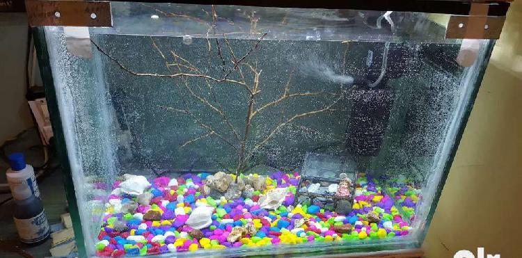 Fish aquarium / tank