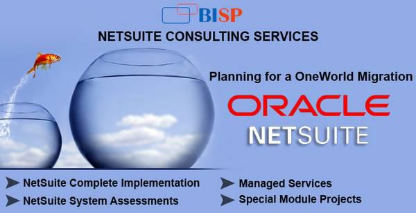 Looking for oracle netsuite erp implementation experts bisp?