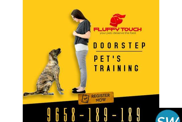 We offers pet grooming and pet training services at home in