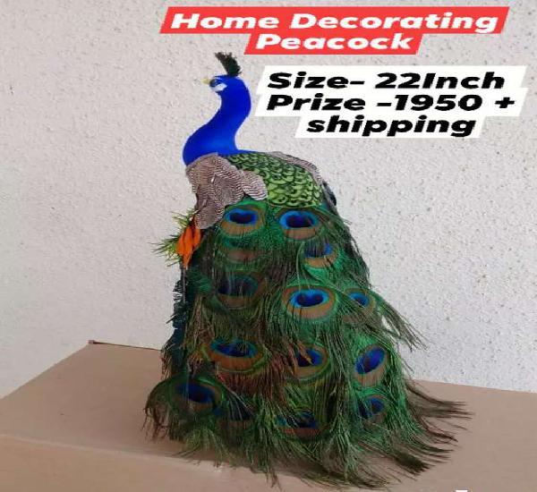 Home decorative peacock