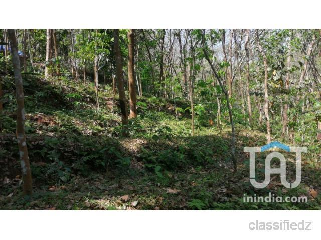 Plot for sale @ kilimanoor thiruvananthapuram