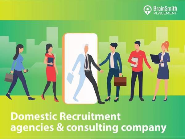 Domestic recruitment agency & consulting company - small biz