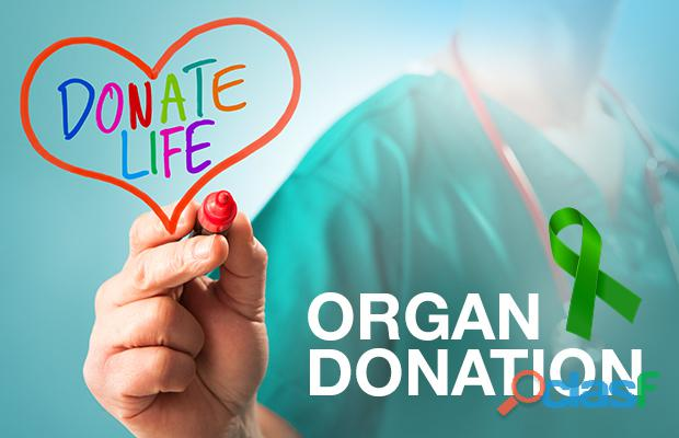 Help us make more transplants possible!
