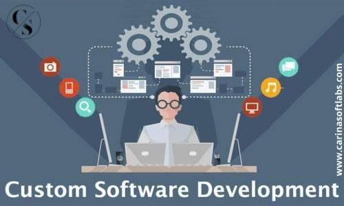 Custom software development services in india | carina